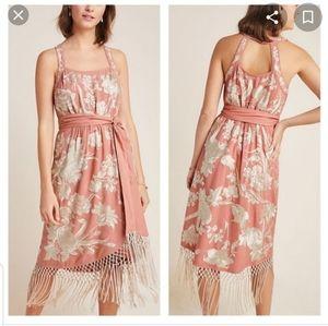 Anthropologie Lucille Fringe embroidered Dress 4